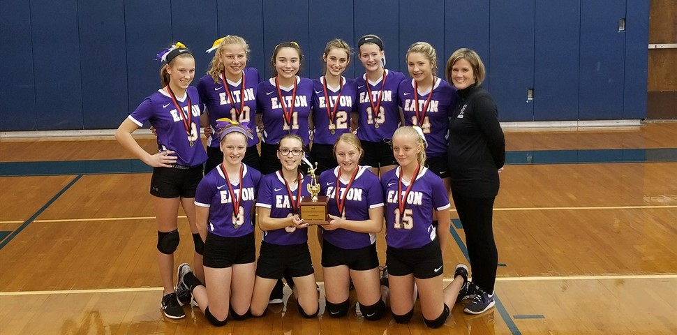 Picture of 8th grade girls volleyball team undefeated and SWBL Champs.